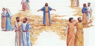 São Lucas, Evangelista . Festa